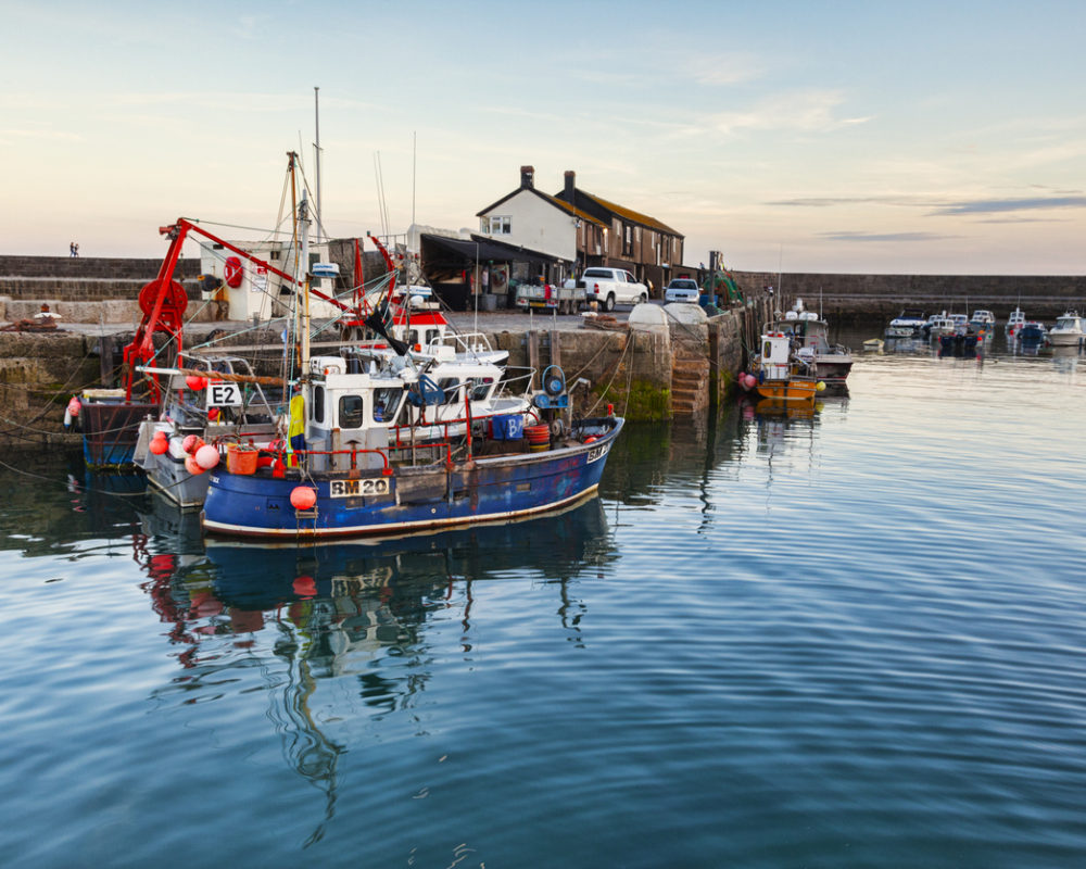 Lyme Regis Fishing Boats